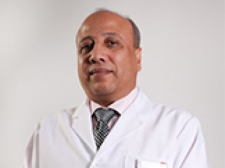 Profile picture of Dr. Ahmed Mahmoud Hady
